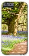 Bluebell Woods IPhone 6s Case