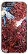 Bluebirds Love Sumac IPhone 6s Case by Helen Klebesadel