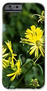 Bold Yellow Flowers IPhone 6s Case by Jason Brow