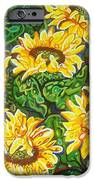 Bountiful Sunflowers IPhone 6s Case by Deborah Glasgow