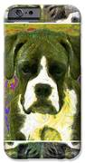 Boxer Dog 20130126 IPhone Case by Wingsdomain Art and Photography