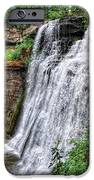 Brandywine Falls IPhone 6s Case