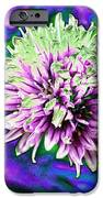 Chive IPhone 6s Case by Jo Ann