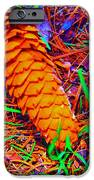 Colorful Pinecone IPhone 6s Case by Michael Sokalski