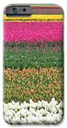 Colors Of Holland IPhone 6s Case by Lars Ruecker