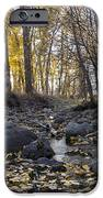 Cottonwood Creek Near Deer Lodge Montana IPhone 6s Case
