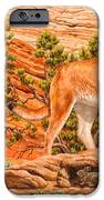 Cougar - Don't Move IPhone 6s Case by Crista Forest