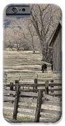 Country Living IPhone 6s Case by Janet Moss