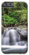 Daintree Rainforest IPhone 6s Case