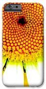 Daisy IPhone 6s Case