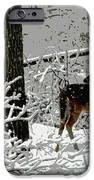 Deer On Snowy Trail IPhone 6s Case by Sharon McLain
