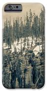 Yellowstone In The Snow IPhone 6s Case
