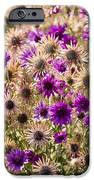 Eternity Flower IPhone 6s Case by Gerald Murray Photography