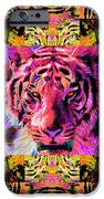 Eyes Of The Bengal Tiger Abstract Window 20130205p80 IPhone Case by Wingsdomain Art and Photography