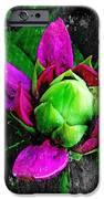 Fairy Bloom  IPhone 6s Case