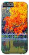 Fall At The Lake IPhone 6s Case