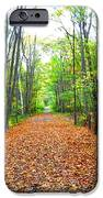 Fall In New England IPhone 6s Case