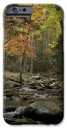 Fall Stream Cades Cove Gsmnp IPhone 6s Case by Paul Herrmann