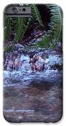 Ferns Dancing IPhone 6s Case by Donald Torgerson
