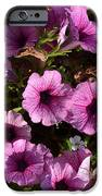 Flowers IPhone 6s Case