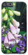 Foxglove In Sunlight IPhone 6s Case by Robert Bray
