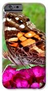 Fritillary Butterfly  IPhone 6s Case by Kim Galluzzo Wozniak