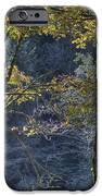 Gate Way To The Winters Forest IPhone 6s Case by Donald Torgerson