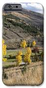 Golden Fall In Montana IPhone 6s Case by Dana Moyer