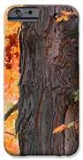 Gorgeous Tree IPhone 6s Case by Lorena Mahoney