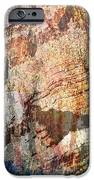 Grand Canyon Color Study IPhone 6s Case