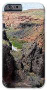 Grand Falls Viewpoint IPhone 6s Case by Carrie Putz