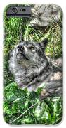 Grey Wolf Dreaming IPhone 6s Case