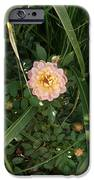 Hidden Perfection IPhone 6s Case by Jacquelyn Roberts