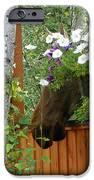 Hiding Moose IPhone 6s Case by Jennifer Kimberly