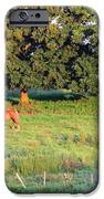 Hillside Diner Two IPhone 6s Case by Will Boutin Photos