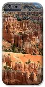 Hoodoo Magic IPhone 6s Case