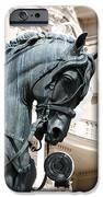 Horse Head IPhone 6s Case