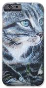 Into The Wild IPhone 6s Case by Lis Zadravec