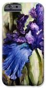 Iris In Bloom 2 IPhone 6s Case