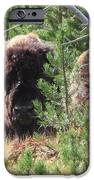 Just Relaxing IPhone 6s Case by Diane Mitchell