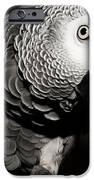 Kaja B W  IPhone 6s Case