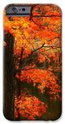 Leaves Over Water IPhone 6s Case by Joyce Kimble Smith