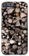 Legna IPhone 6s Case by Niki Mastromonaco