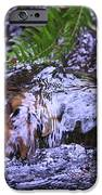 Little Falls IPhone 6s Case by Donald Torgerson