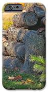 Log Pile IPhone 6s Case by Peter Jackson