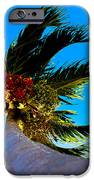 Lone Palm IPhone 6s Case by Lisa Cortez