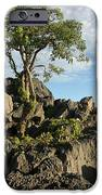 Lone Tree IPhone 6s Case by Gordon  Grimwade