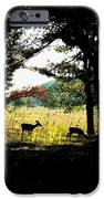 Look Out IPhone 6s Case by Christian Rooney