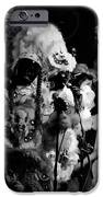 Mardi Gras Indians At The Gold Mine Saloon In New Orleans IPhone 6s Case by Louis Maistros