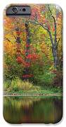 Misty Fall IPhone 6s Case by Lorena Mahoney